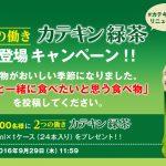 カテキン緑茶 350ml×24本入りを抽選で5,000名にプレゼント