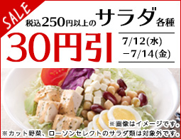 税込250円以上のサラダ各種30円引きセール