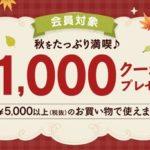 アイリスプラザ 秋祭り、5000円以上の買い物に使える1,000円クーポン配信中 9月15日朝10時まで