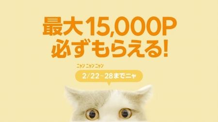 LINEショッピング、1万円以上の購入で最大15,000ポイントプレゼントキャンペーン 2月28日まで