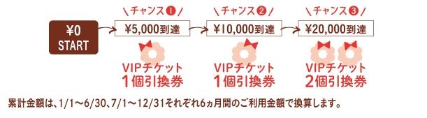 VIPチケット詳細