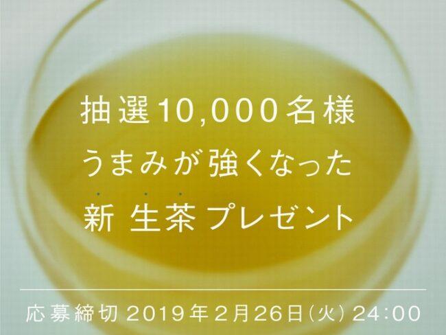 新生茶プレゼント