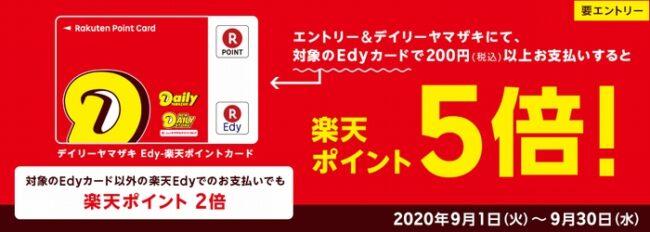 edy5倍